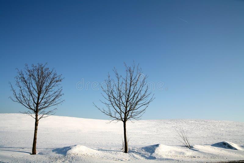 Winter in denmark royalty free stock photos