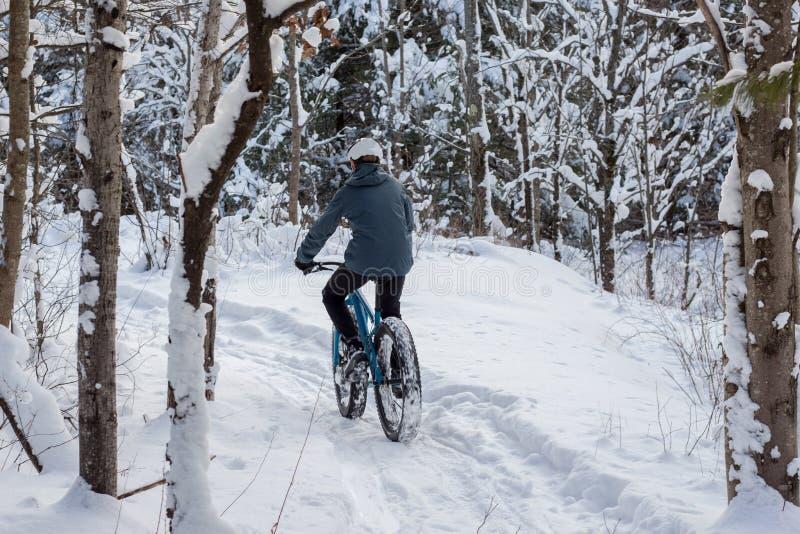 Winter, der in den Wald radfährt stockbild