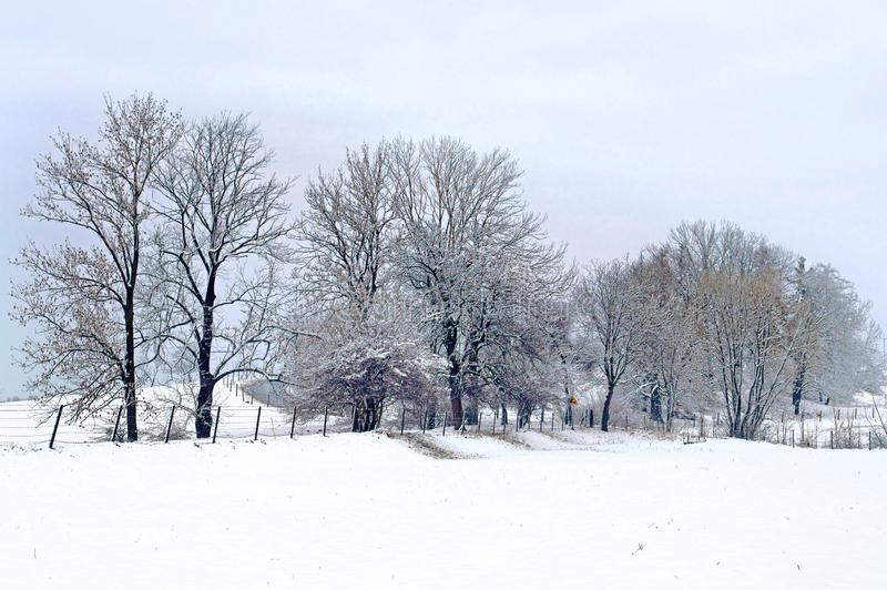 Winter in der Landschaft stockfoto