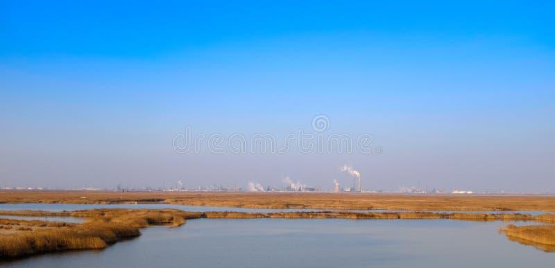 In winter, die de Tianjin-het natuurreservaatrand van het moerasland van de het noordenhaven van de chemische installatie de over royalty-vrije stock foto's