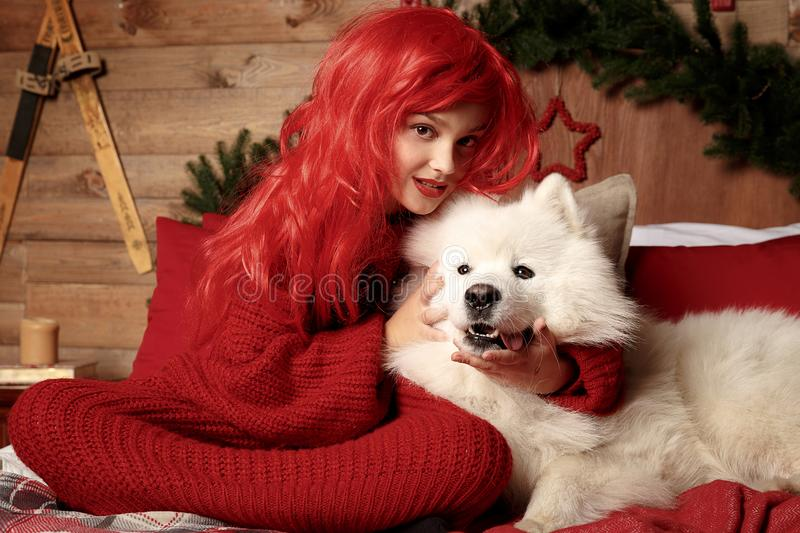 Winter dog holiday and Christmas. A girl in a knitted sweater and with red hair with a pet in the studio. Christmas royalty free stock photos