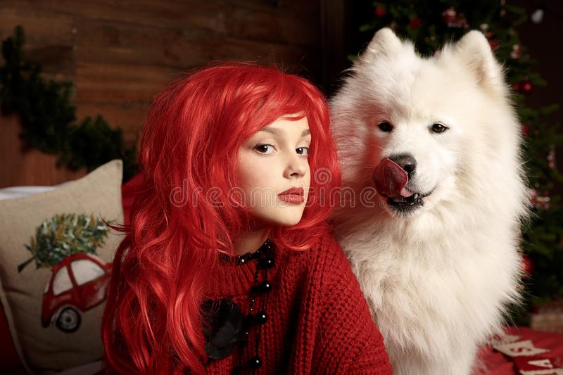 Winter dog holiday and Christmas. A girl in a knitted sweater and with red hair with a pet in the studio. Christmas royalty free stock photo
