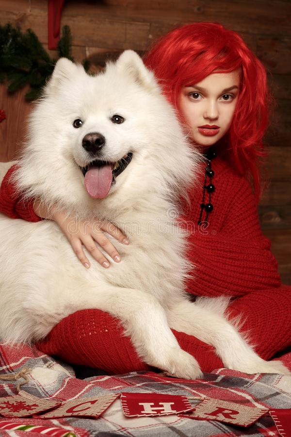 Winter dog holiday and Christmas. A girl in a knitted sweater and with red hair with a pet in the studio. Christmas royalty free stock image