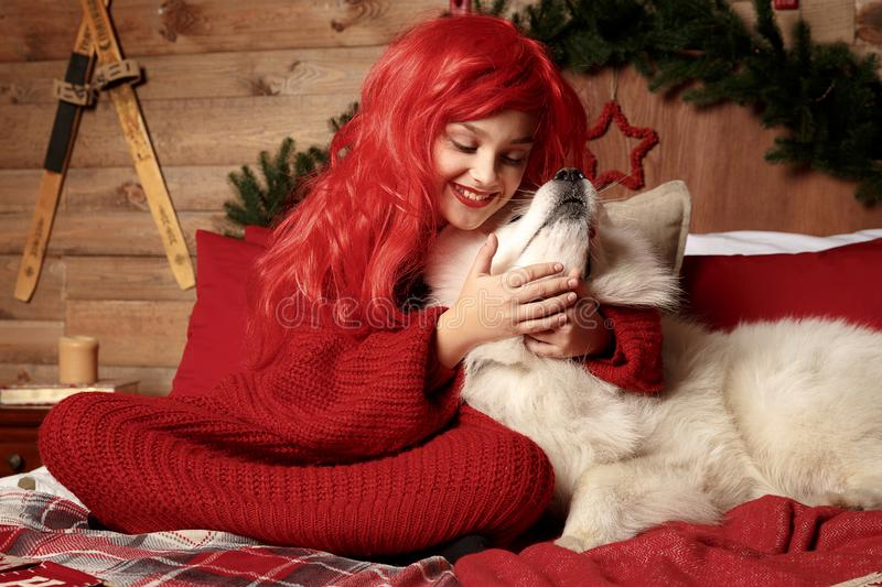 Winter dog holiday and Christmas. A girl in a knitted sweater and with red hair with a pet in the studio. Christmas royalty free stock images