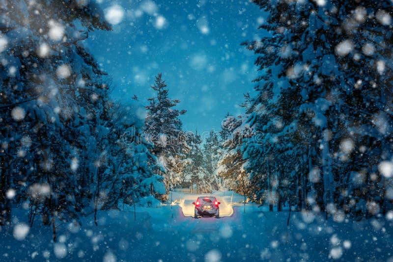 Winter Driving at snowfall night - Lights of car in snowy road. Winter Driving at snowfall night - Lights of car and winter snowy road in dark forest, big fir stock image