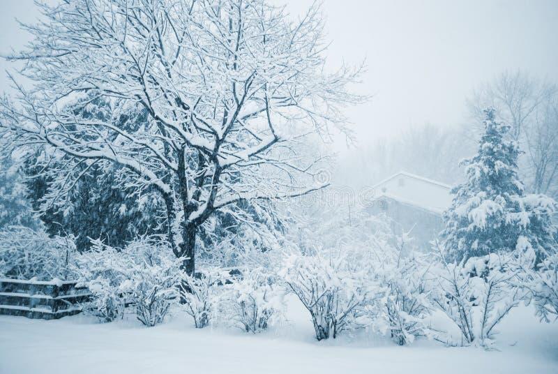 Winter Duotone stockfotos