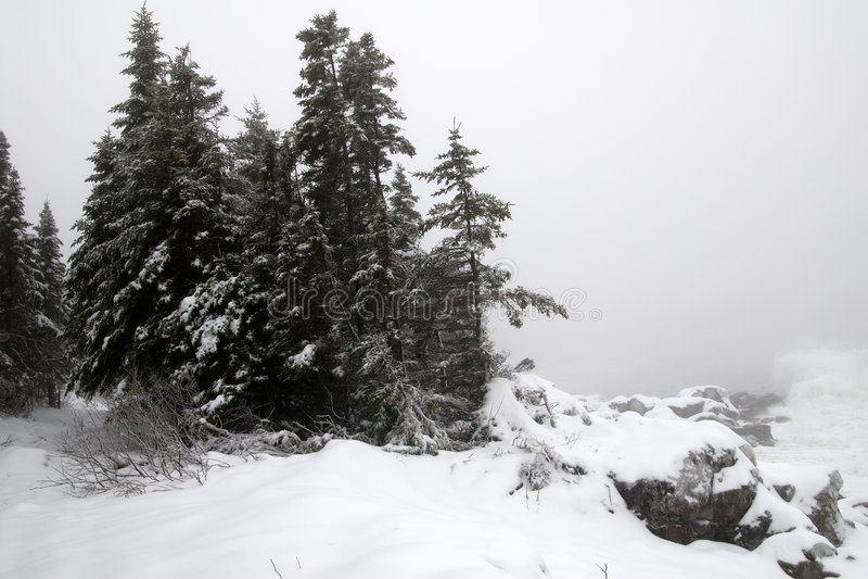 Winter east-coast royalty free stock photos