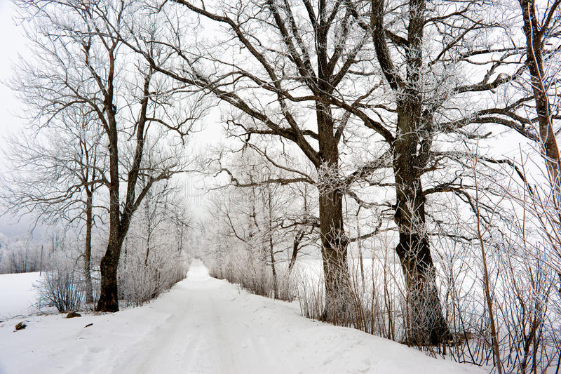 Download Winter in Europe stock image. Image of iceage, snowdrift - 27337189