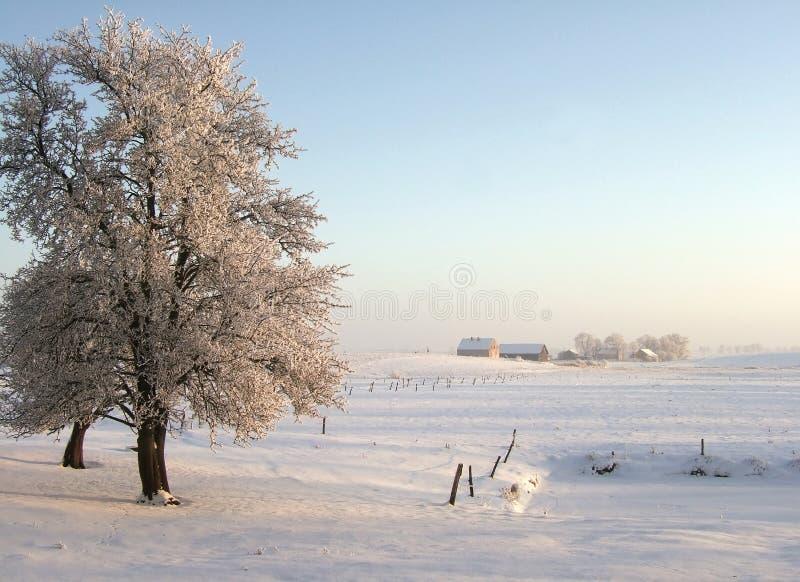 Winter evening stock photography