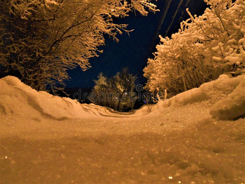 Winter eavening on the snowy small street with frosty branches and path. royalty free stock photos