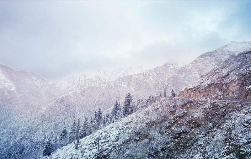 Winter fairy tale on the snow mountain. In China stock image