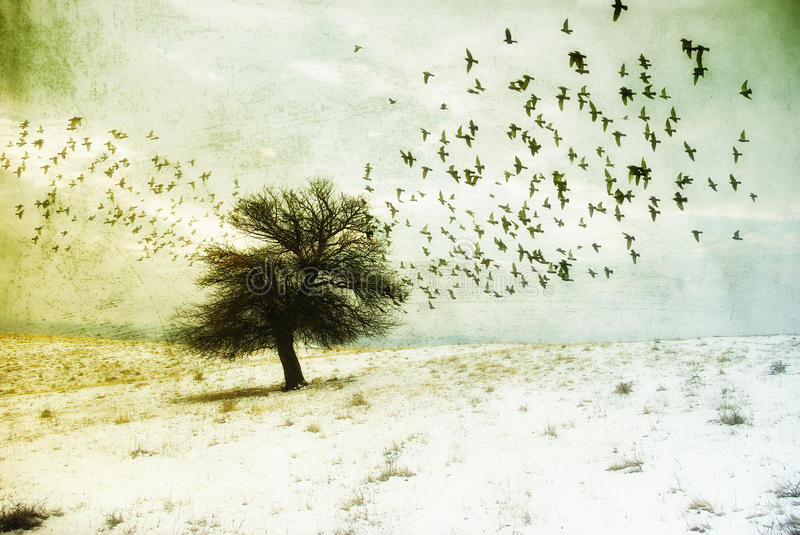 Winter fantasy landscape. Grunge fantasy landscape with birds flying towards a lone tree. Surrealist illustration royalty free illustration