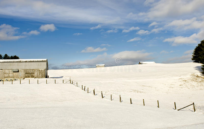 Winter Farm Royalty Free Stock Photo