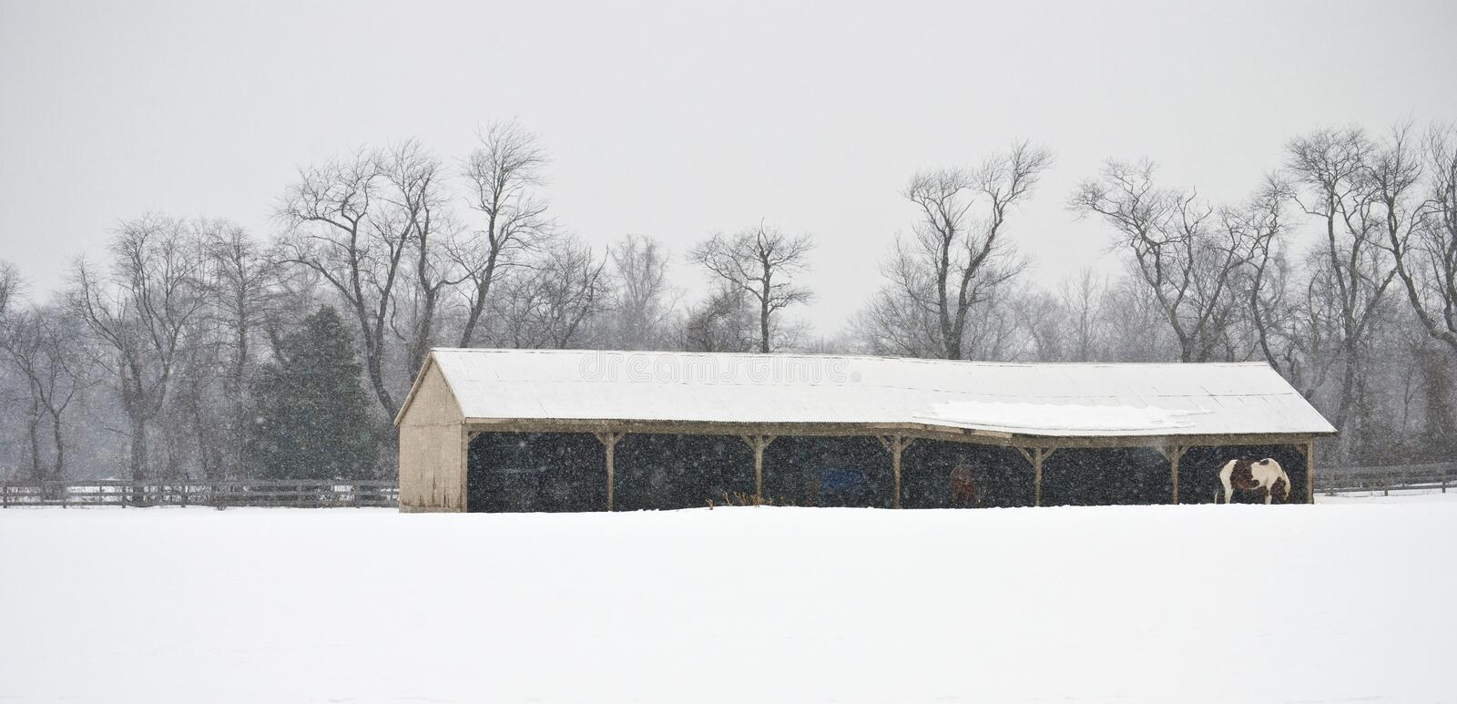 Winter Farm Panorama