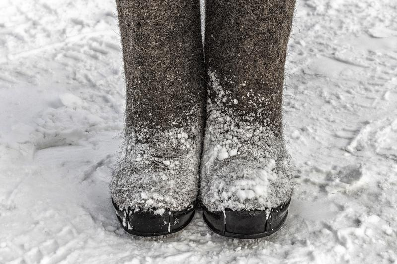 Winter felt boots in the snow royalty free stock image