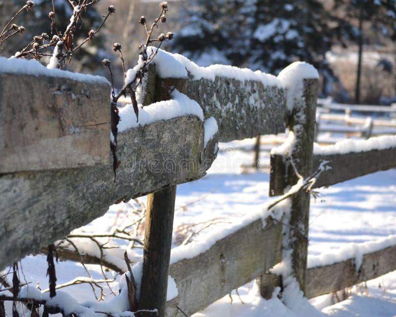 Winter Fenceline lizenzfreie stockfotos
