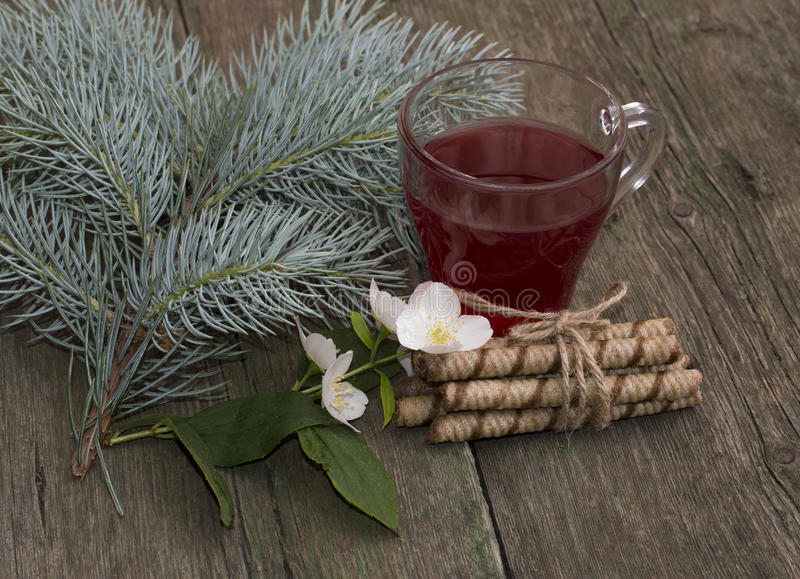 Winter festive card, tea, fir-tree branch, cookies and flower. Still life on a subject flowers and drinks royalty free stock photo