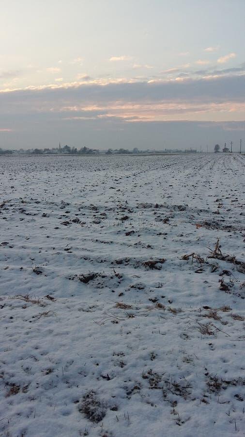 Winter field stockfotografie