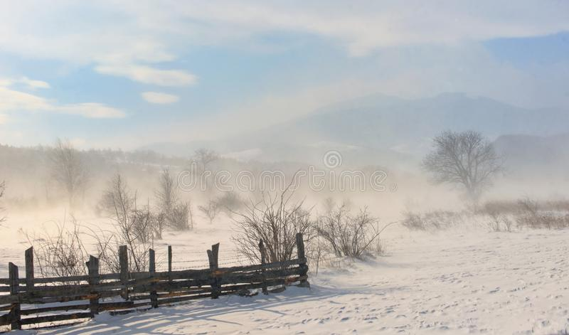 Winter field in a storm in mountains royalty free stock photo