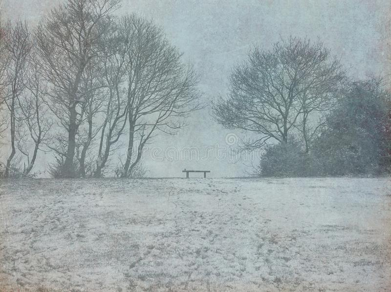 Winter Field, Trees and Bench stock images