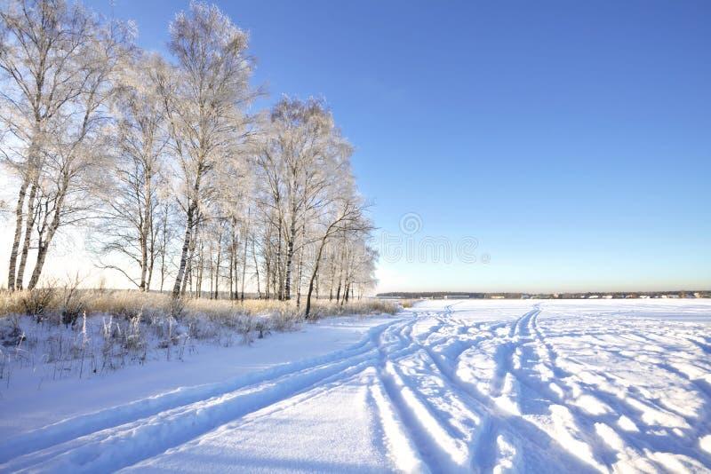 Download Winter field under stock image. Image of beautiful, horizon - 21252829
