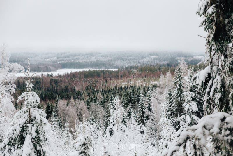 Winter in Finnland-Standpunkt vom zweiten Höhepunkt in Süd-Finnland lizenzfreies stockfoto