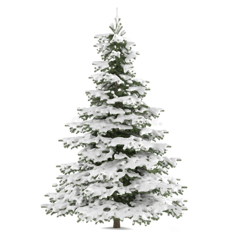 Download Winter Fir-tree On Snow Isolated Stock Illustration - Illustration of nature, forest: 36406679
