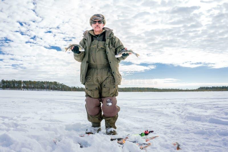 Winter fishing man keeps perch catch winter sport stock photography
