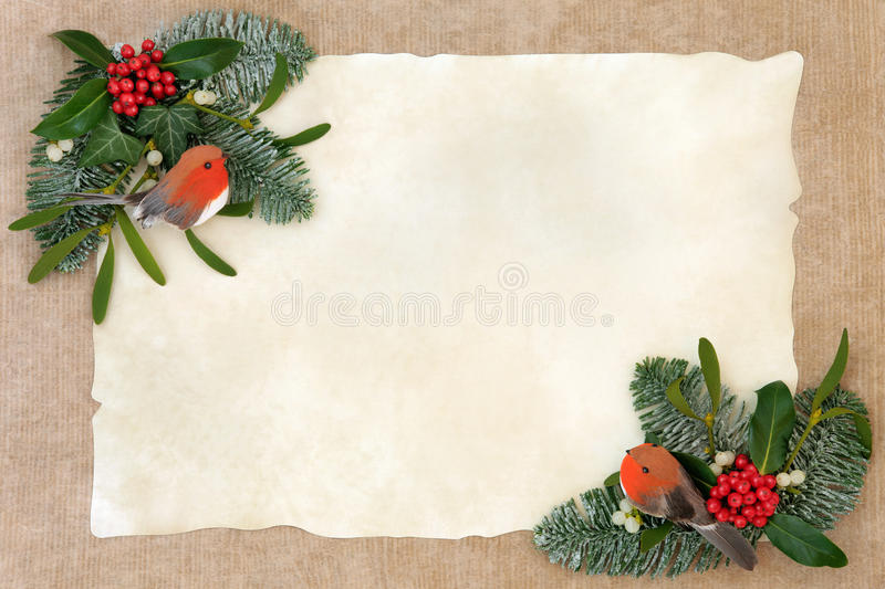 Winter Flora and Robin Border royalty free stock photography