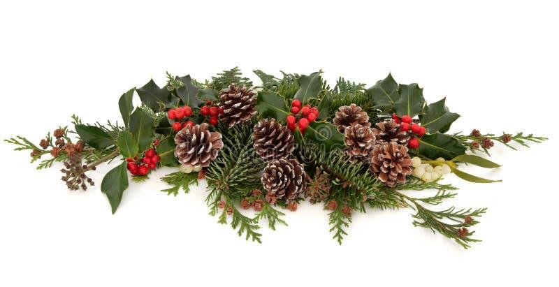 Winter-Flora Und Fauna Lizenzfreies Stockbild