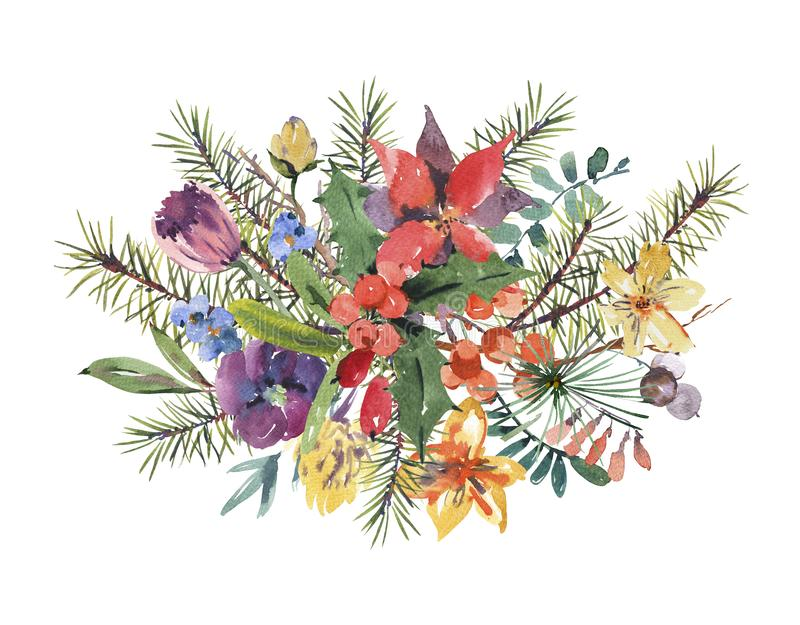 Winter floral watercolor Christmas greeting card with tree branches, holly, flowers and berries. vector illustration