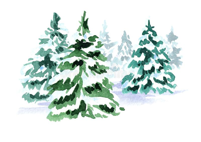Winter forest. Christmas fir tree. Watercolor hand drawn illustration, isolated on white background. Winter forest. Christmas fir tree. Watercolor hand drawn stock illustration
