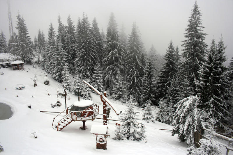 Download Winter forest clearing stock image. Image of frozen, trees - 17522151