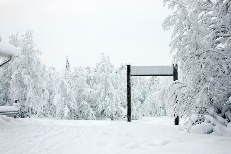 Winter forest and ski-run gate royalty free stock photo