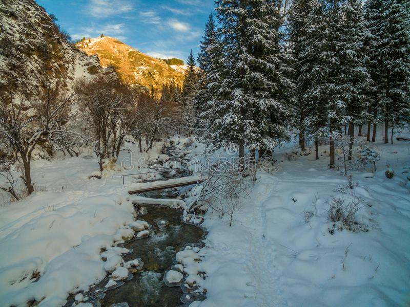 Winter forest snow river flow landscape. Forest river flow in winter snow forest scene. Winter snow river forest view stock photography