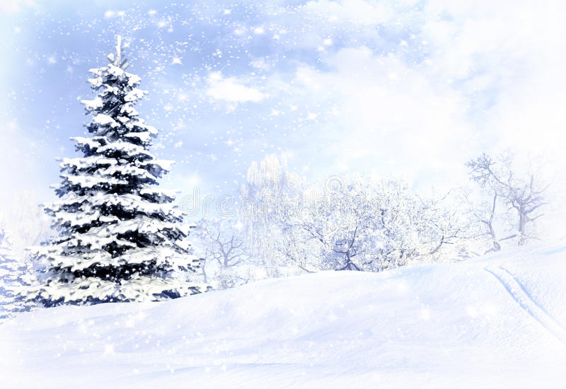 Winter forest after a snow storm blizzard. royalty free stock photos