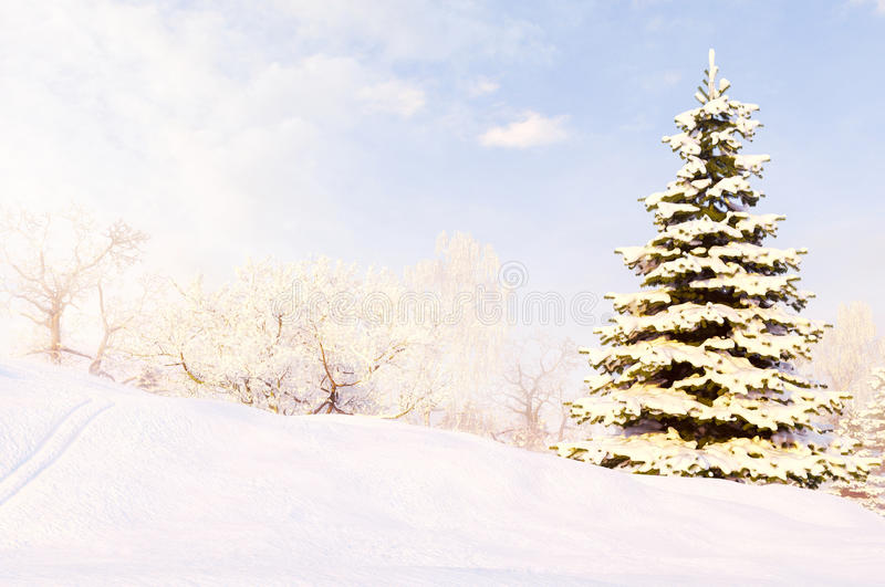 Winter forest after a snow storm blizzard. stock images