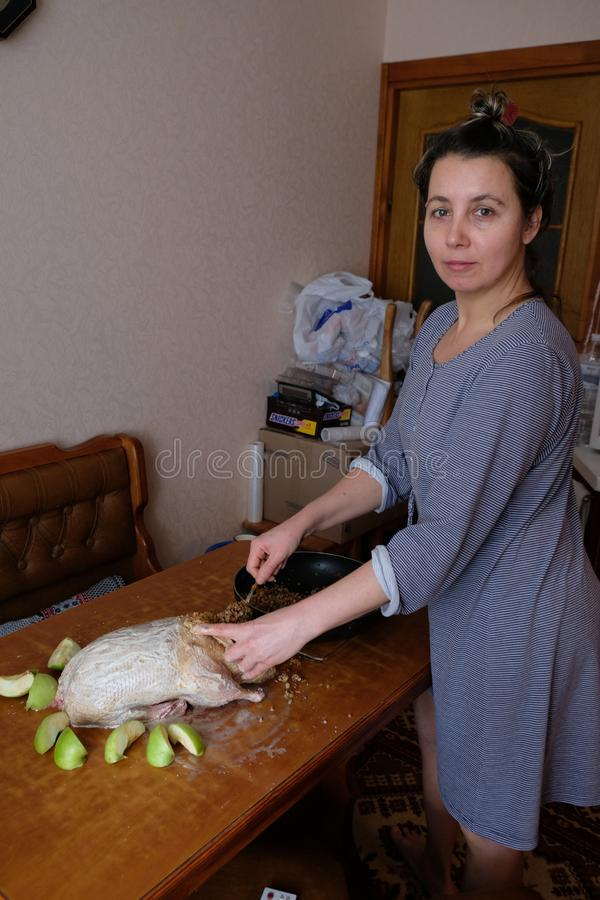 Woman at home preparing the duck with apples visible cooking process. Products apples bird table royalty free stock photo