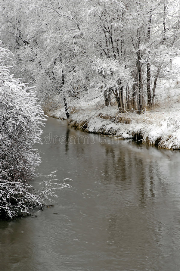 Download Winter Forrest By River Stock Photo - Image: 1925130