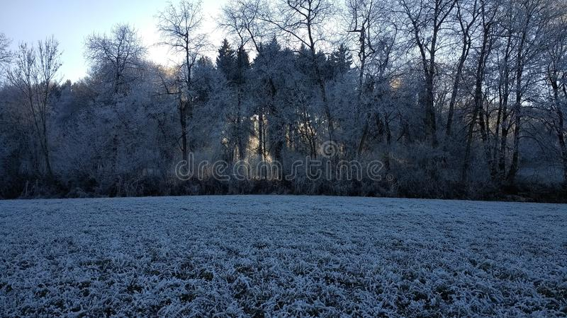 Winter, Frost, Freezing, Snow stock images
