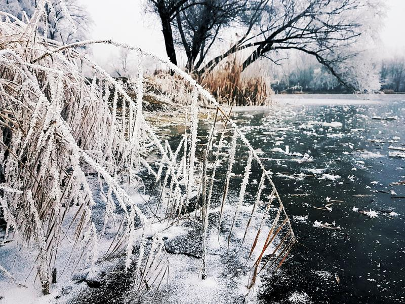 Download Winter Stock Photo - Image: 83700113
