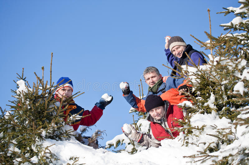 Download Winter fun stock image. Image of together, seasonal, trees - 18122871