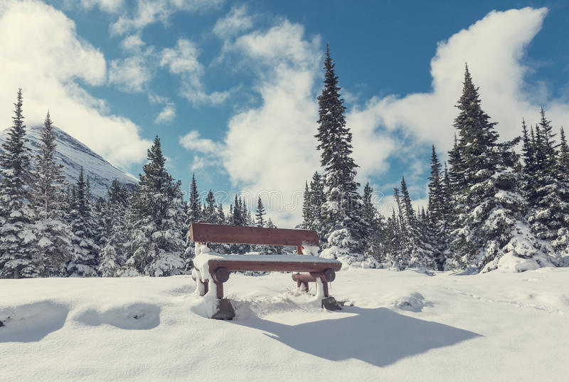 Winter in Glacier Park royalty free stock photography