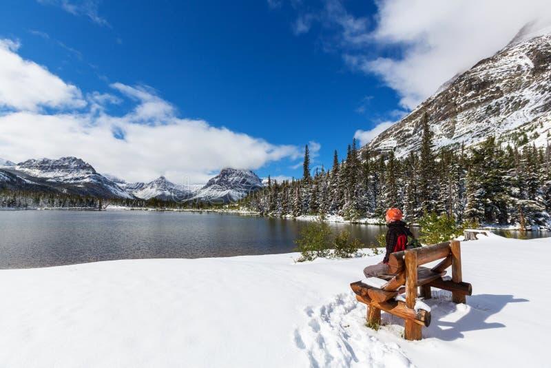 Winter in Glacier Park stock photography