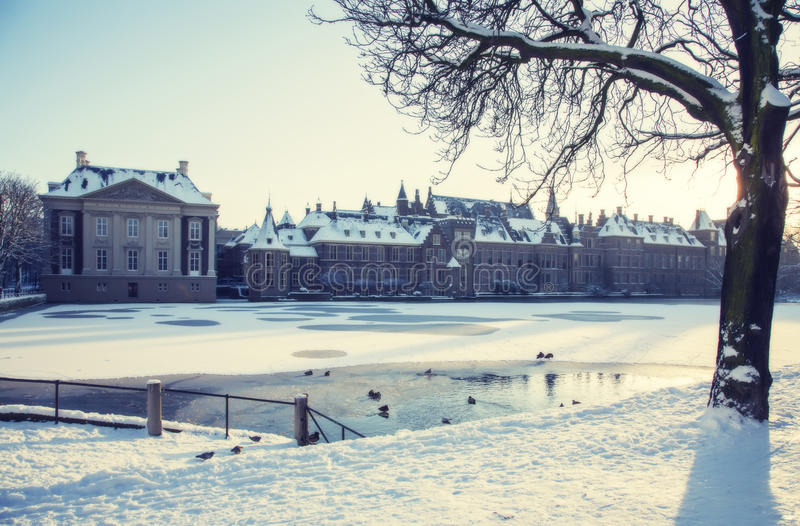 Winter in the Hague stock photo