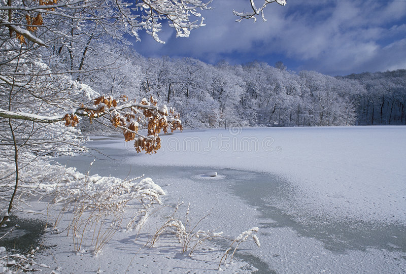 Winter Hall Lake royalty free stock photography