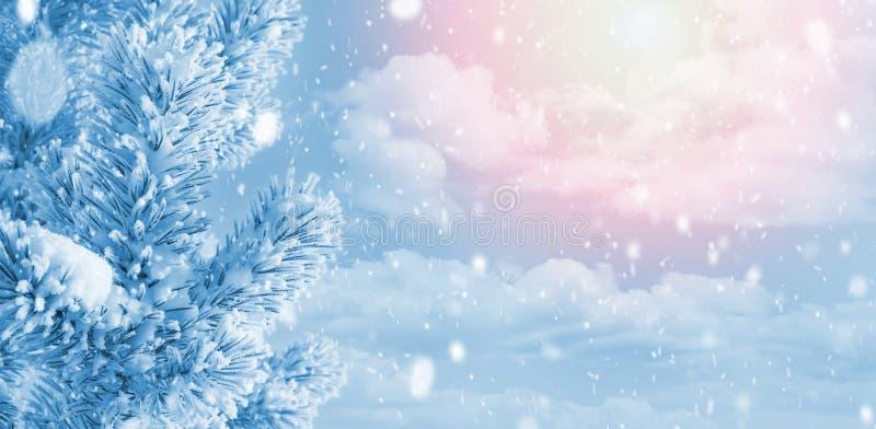 Winter-heller Hintergrund stockfoto