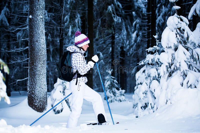 Download Winter hiking stock image. Image of tree, nordic, snowshoes - 23460443