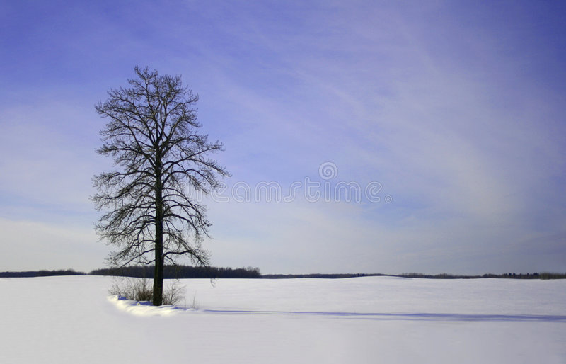 Winter-Hinweissymbol lizenzfreie stockfotografie