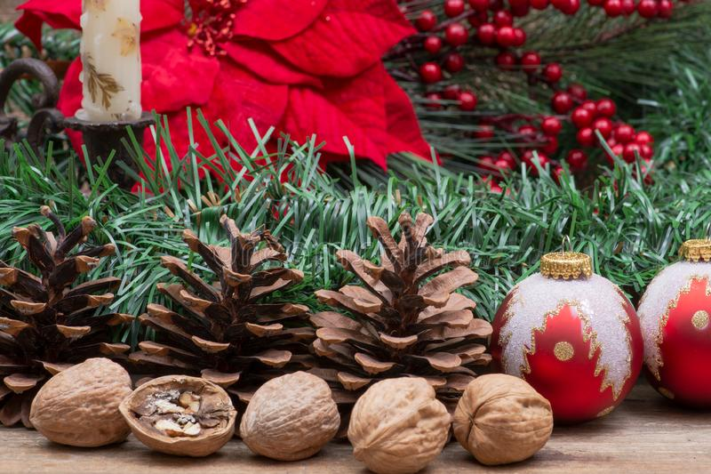 Winter holiday decoration: Blooming Red Poinsettia, Pine, Berry bush, Christmas tree balls, pine cone, walnuts and burning candle. On wooden background royalty free stock images